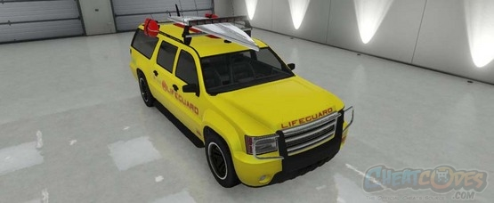 Declasse Lifeguard